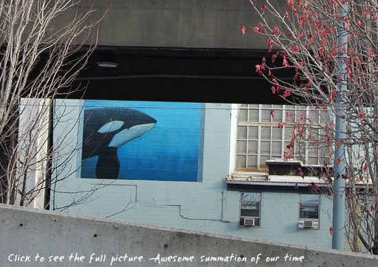 Seattle Whale by eendrachte